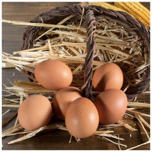 Huevos de Payés 6uds