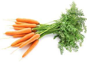 Zanahorias Manojo